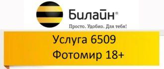 Услуга 6509 Фотомир 18